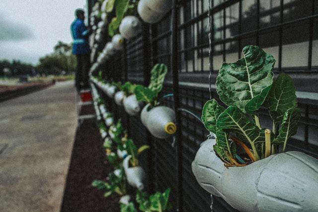 DIY, donner une deuxième vie aux bouteilles plastique